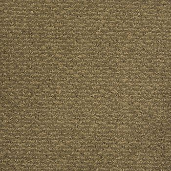 Sweet N Simple Pattern Carpet Tradewinds Color