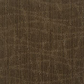 Symphony Pattern Carpet Urbana Color