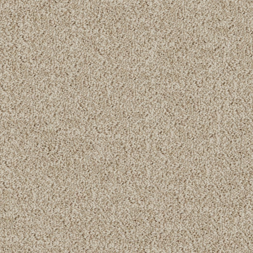 Nice Carpet Ideas