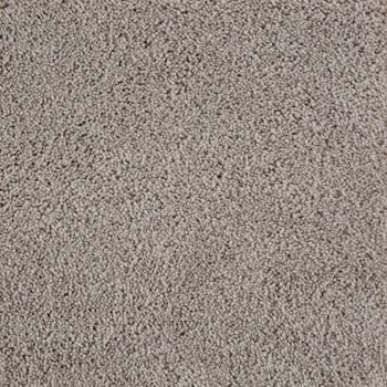 Beldon Plush Carpet Eclair Color