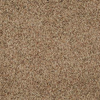 Cloud Nine Frieze Carpet Laid Back Color