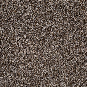 Glenora Frieze Carpet Calypso Color