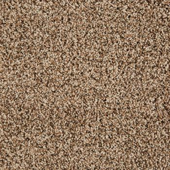 Glenora Frieze Carpet Soleil Color