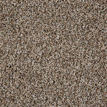 Glenora Frieze Carpet Tundra Color