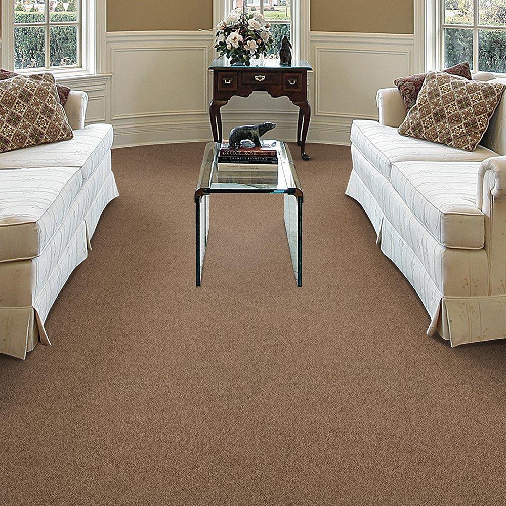 Bountiful series empire today bountiful plush carpet baanklon Choice Image