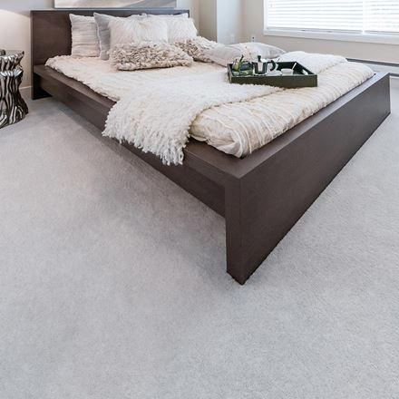 Parlor Plush Carpet