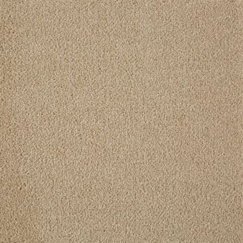 Fair Meadow Plush Carpet Featherstone Color