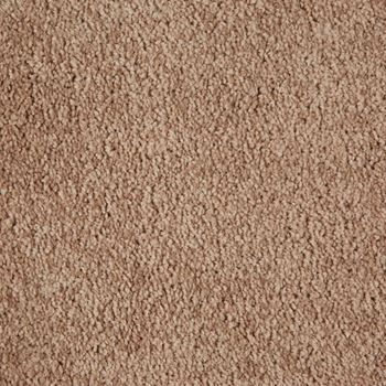 Ridgeland Plush Carpet Camelot Color