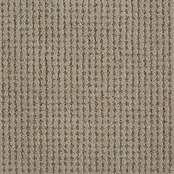 Big Time Pattern Carpet Driftwood Color