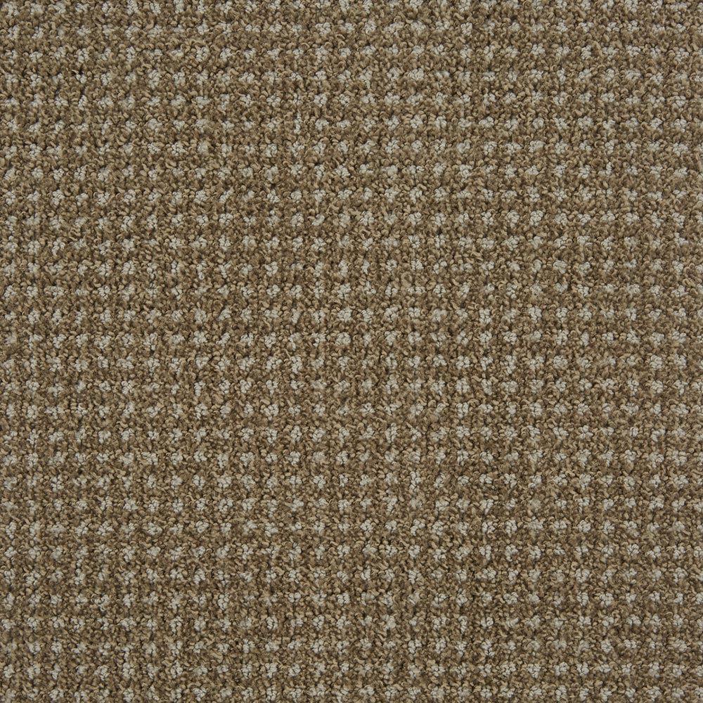 Big Time Earthy Carpet