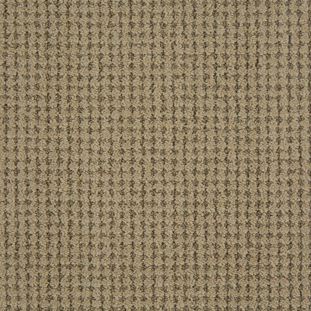 Big Time Misty Dawn Carpet