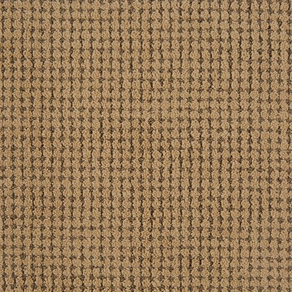 Big Time Wheatfield Carpet