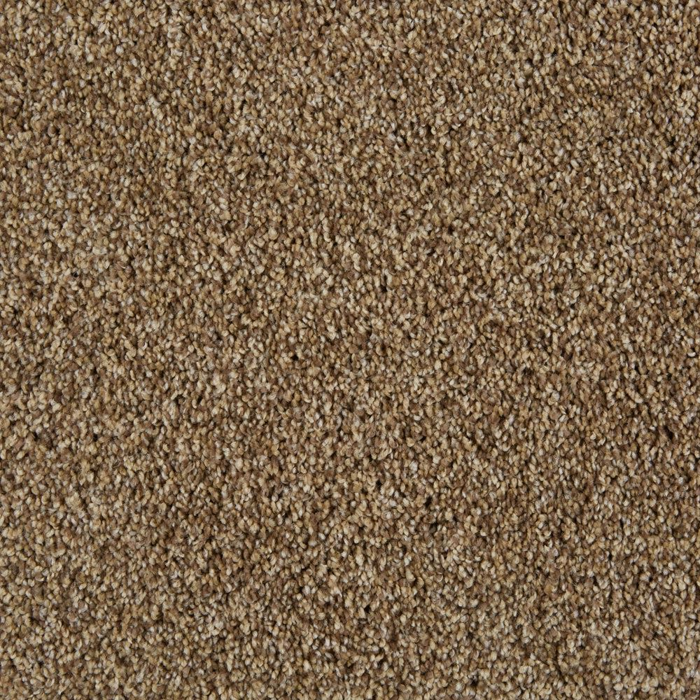 Cool Breeze Plush Carpet Aged Tree Color