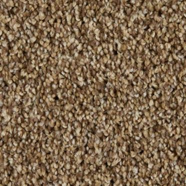 Cool Breeze Plush Carpet Aged Tree Color
