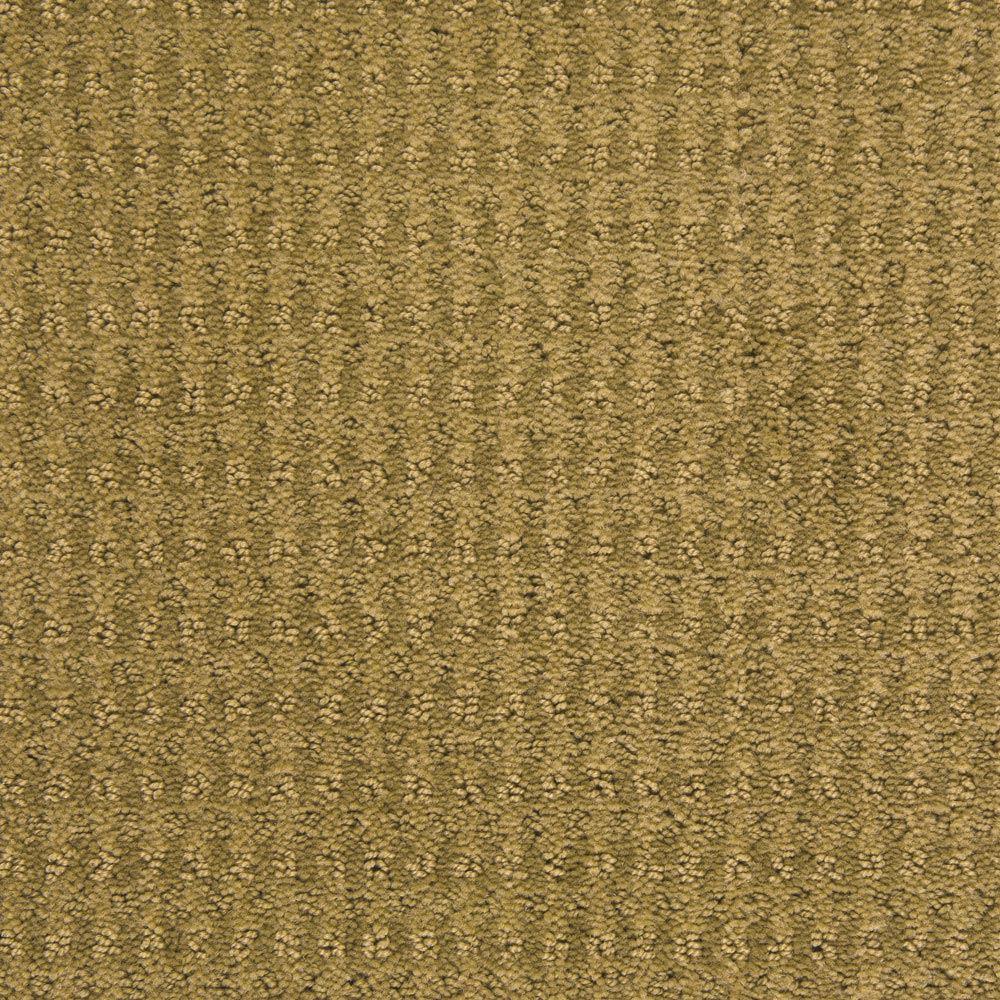 Dont Stop Believin Fennel Carpet