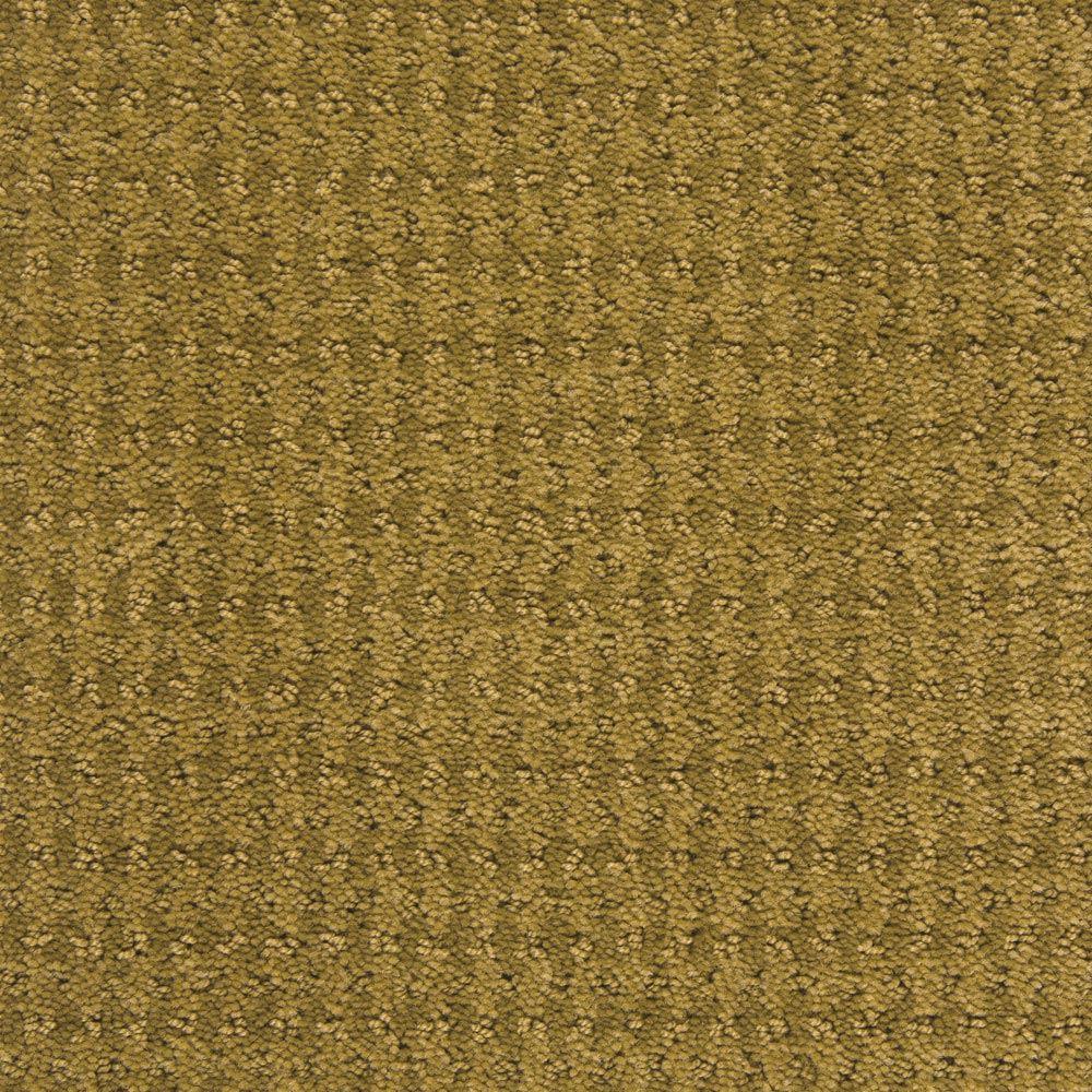 Dont Stop Believin Sahara Sun Carpet