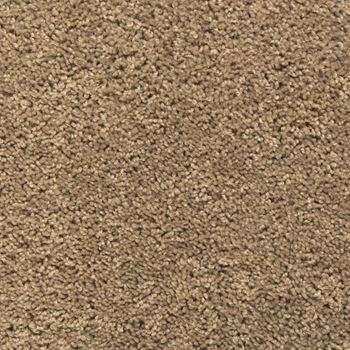 Eden Plush Carpet Pumice Color