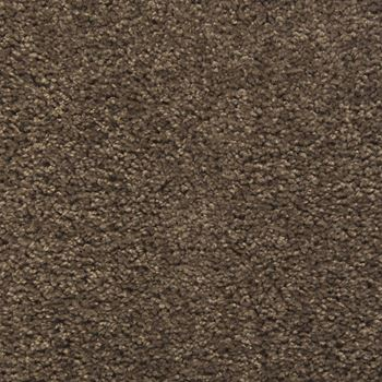 Eden Plush Carpet Rock Garden Color