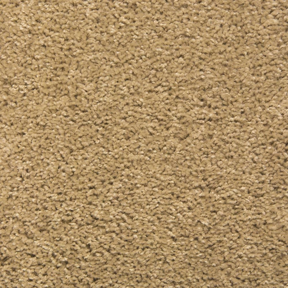 Eden Plush Carpet Toasty Color