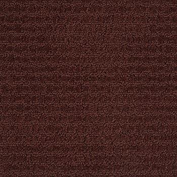 Envision Pattern Carpet Berry Color