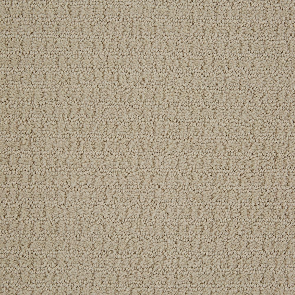 Envision Pattern Carpet Canvas Color