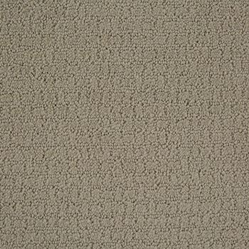 Envision Pattern Carpet Cold Water Color