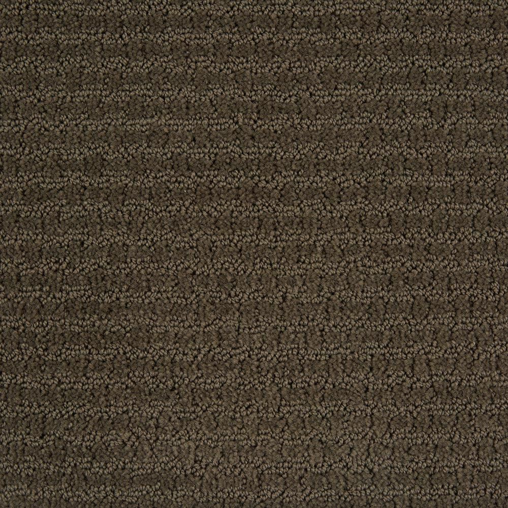 Envision Graphite Carpet