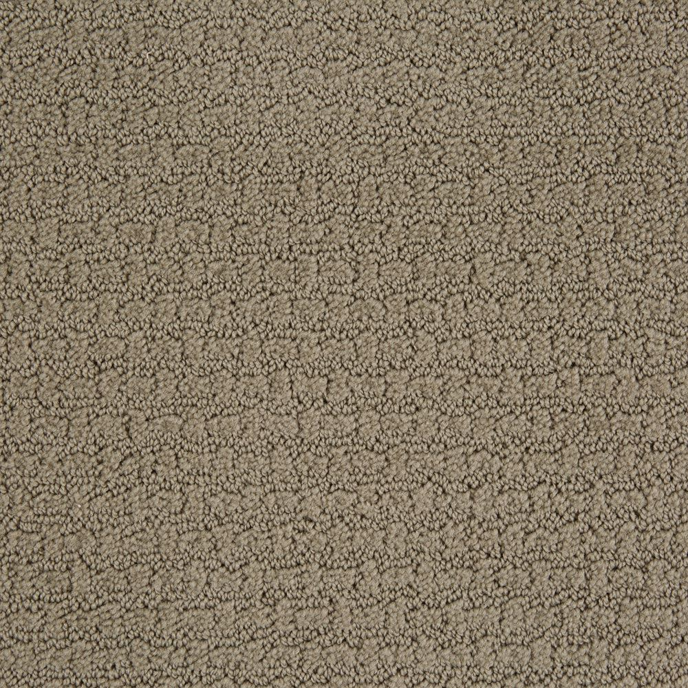 Envision Gray Flannel Carpet