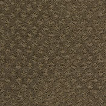Fallen Star Pattern Carpet Night Vision Color