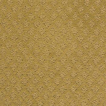 Fallen Star Pattern Carpet Serenity Color