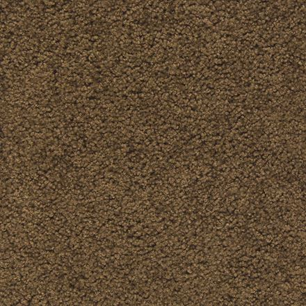 Gilmer Plush Carpet