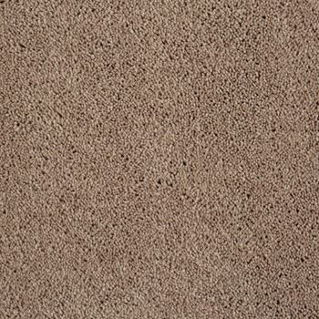 Golden Fields Plush Carpet Harvest Taupe Color