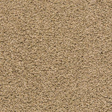 Making Waves Plush Carpet