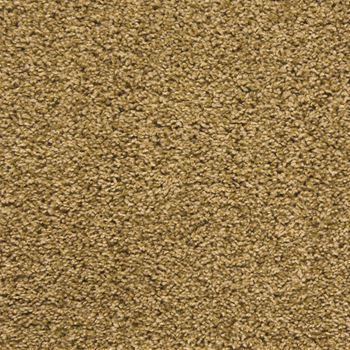 Making Waves Plush Carpet Treasure Trove Color
