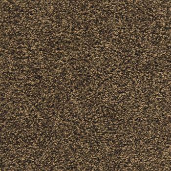 Making Waves Plush Carpet Tree Bark Color