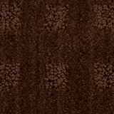 Marquis Color Catskill Brown