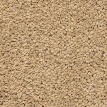 Match Play Plush Carpet Big Win Color
