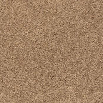 Match Play Plush Carpet Game Day Color
