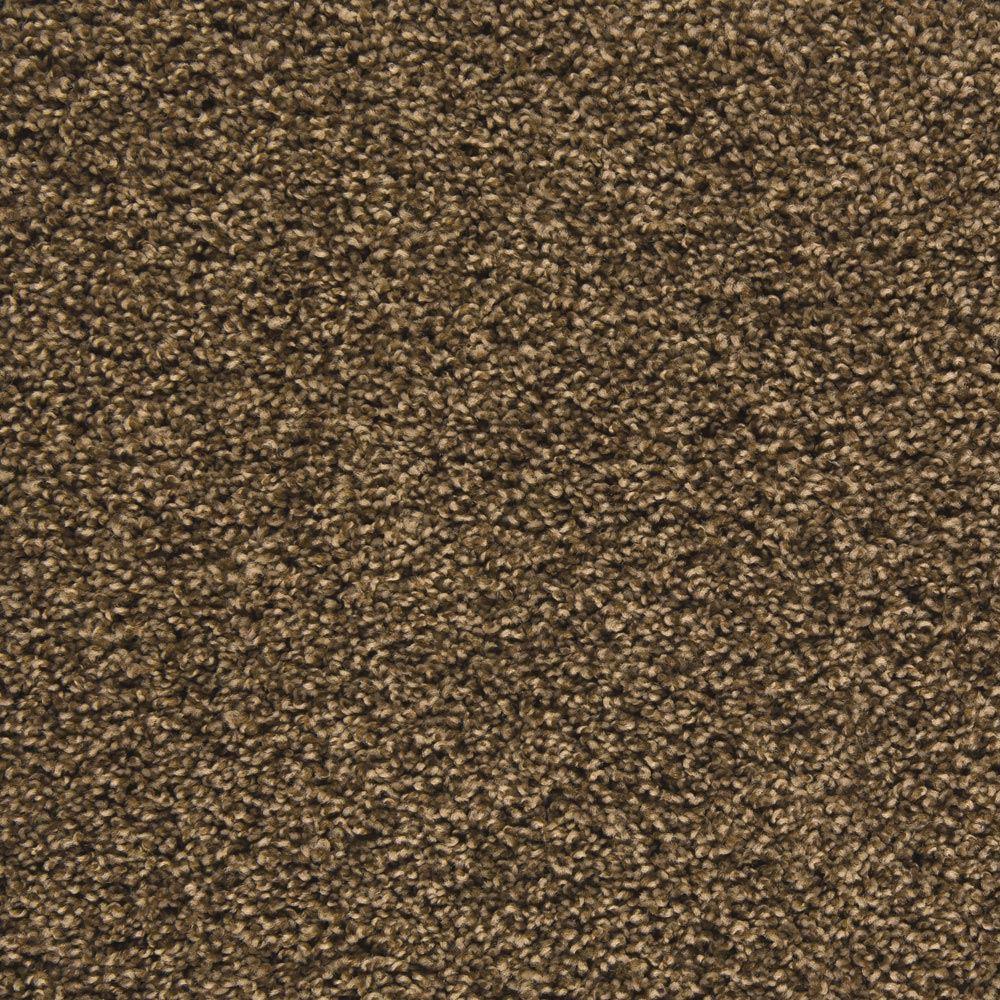 Mix It Up Plush Carpet Accomplished Color