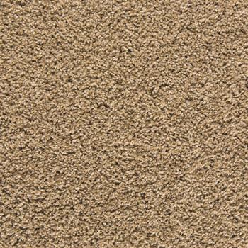 Mix It Up Plush Carpet Amazing Grace Color