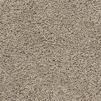 Mix It Up Plush Carpet Flawless Color
