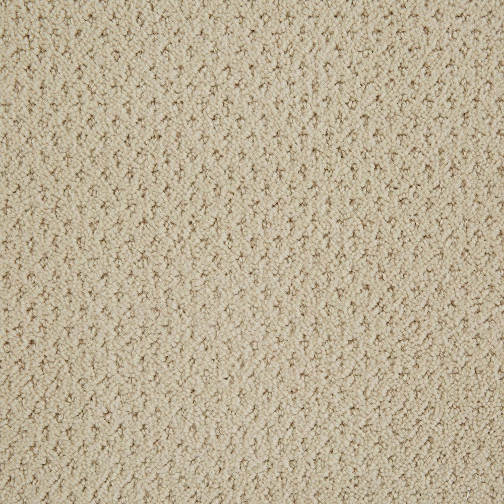Motivate Pattern Carpet Canvas Color