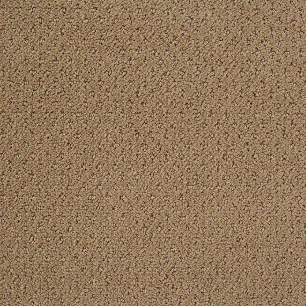 Motivate Mushroom Carpet