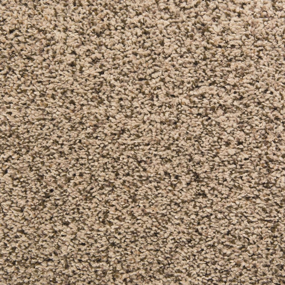 Palmetto Waterbury Carpet