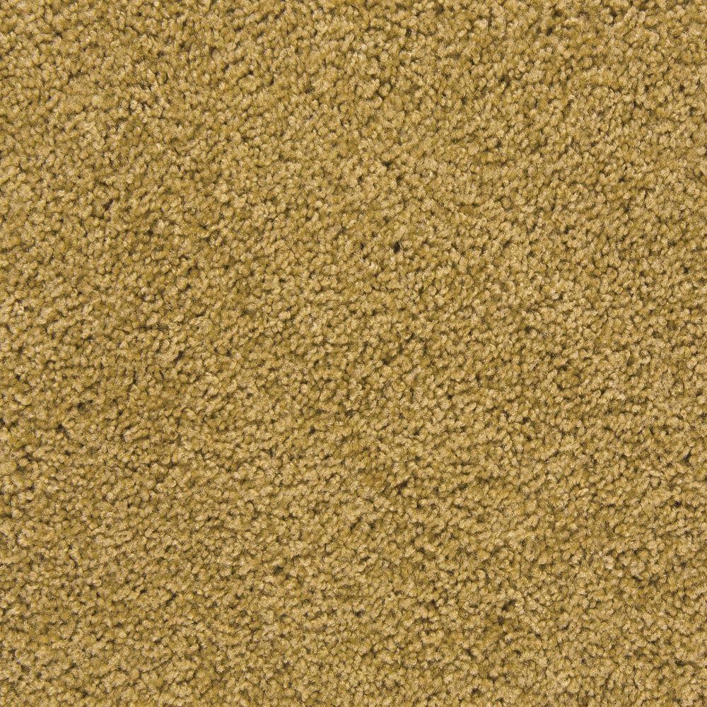 Pendleton Plush Carpet Almond Silk Color