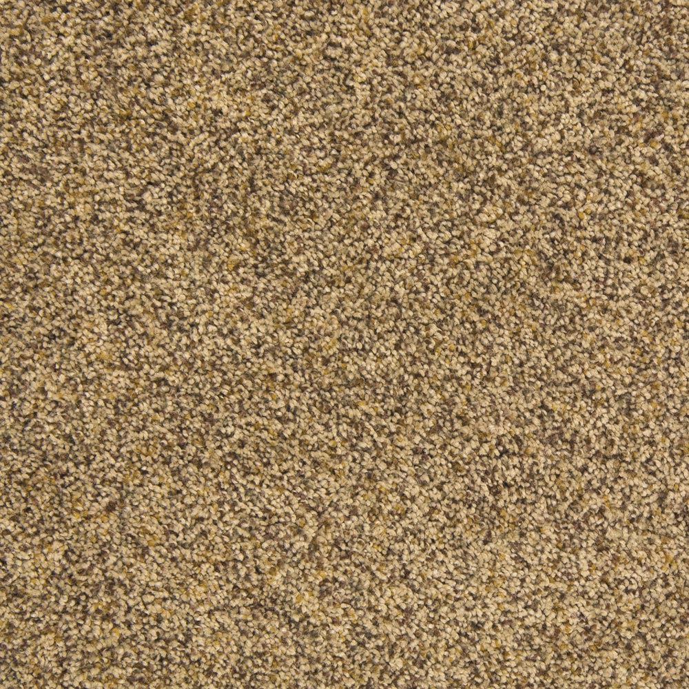 Visual Beauty Glamour Carpet