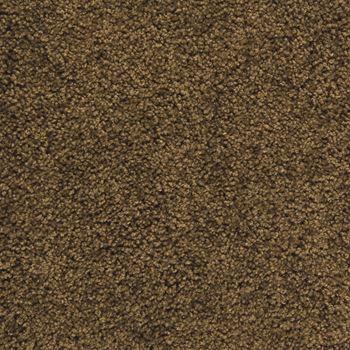 Pendleton Plush Carpet Dark Cocoa Color