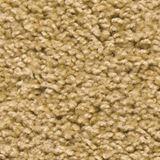 Pendleton Color Flax Seed
