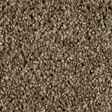 Sunny Isles Frieze Carpet Studio Clay Color