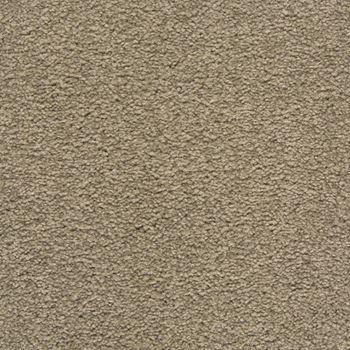 Royal Court Plush Carpet Armor Color